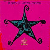 A Star for Bram by Robyn Hitchcock