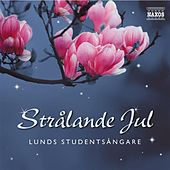 Lunds Studentsangare: Stralande Jul (Radiant Christmas) by Various Artists