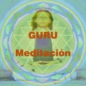 Guru Meditacion by Various Artists
