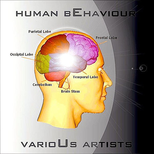 Human Behaviour by Various Artists