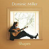 Shapes by Dominic Miller