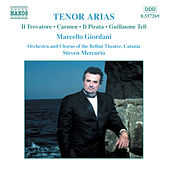 Tenor Arias by Various Artists