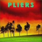 Pliers by Pliers
