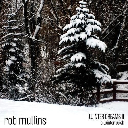 A Winter Wish (Winter Dreams II) by Rob Mullins