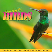 Relaxing Sounds of the Birds Vol. 3 by Various Artists