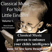 Classical Music For Your Little Einstein by Various Artists