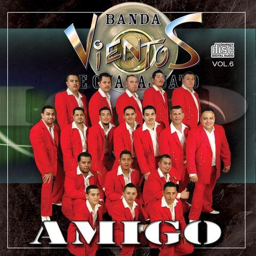 Amigo by Banda Vientos De Guanajuato