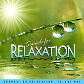 Sounds for Relaxation Vol. 1 by Various Artists