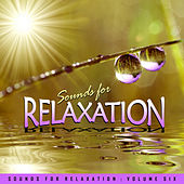 Sounds for Relaxation Vol. 6 by Various Artists