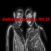 Ambient Trip Route: Vol.10 by Various Artists