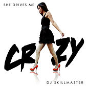 She Drives Me Crazy by DJ Skillmaster