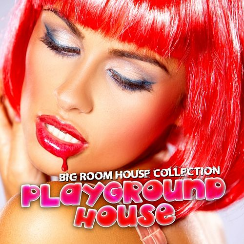 Playground House (Volume 1) by Various Artists