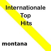 Internationale Top Hits by Various Artists