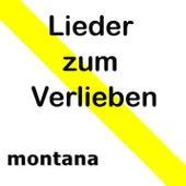 Lieder zum Verlieben by Various Artists