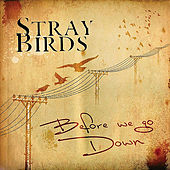 Before We Go Down by Stray Birds