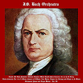 Vivaldi, J.S. Bach, Pachelbel, Albinoni, Schubert, Walter Rinaldi: String Concerto, Air On The G String, Violin Concerto No. 1 in A Minor, Canon in D Major, Ave Maria, Adagio for Strings and Organ in G Minor, Orchestral, Organ and Piano  Works - Vol. II by Johann Sebastian Bach
