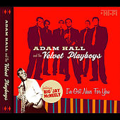 I've Got News for You by Adam Hall and the Velvet Playboys