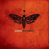 Life Is Wonderful by Jason Masi