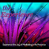 The Experience: Experiencing the Joy of Meditating in His Presence by Identity Network