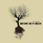 El paso del tiempo by Brand New Brain