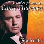 Figuras del Cante Flamenco by Fosforito