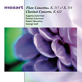 Mozart: Flute Concertos, K. 313 & K. 314; Clarinet Concerto, K. 622 by Various Artists