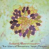 The World Becomes Your Mirror by Adam Bernstein