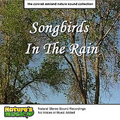 Songbirds in the Rain by Nature's Music