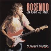 Un Palo Al Agua (20 Grandes Canciones) by Rosendo