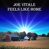 Feels Like Home by Joe Vitale