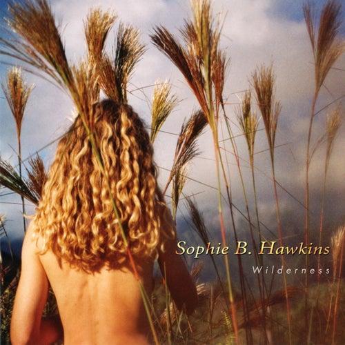 Beautiful Girl by Sophie B. Hawkins