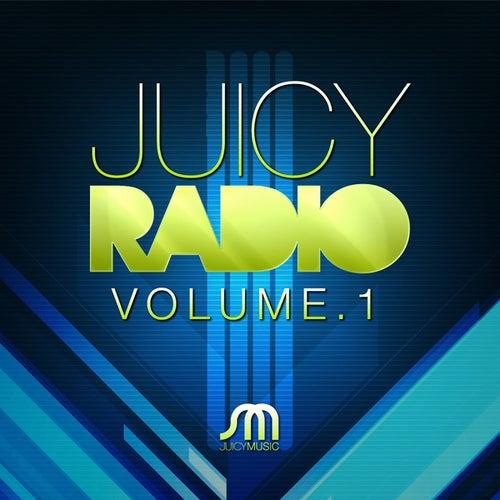 Juicy Radio Volume 1 by Various Artists