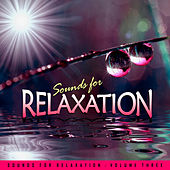 Sounds for Relaxation Vol. 3 by Various Artists