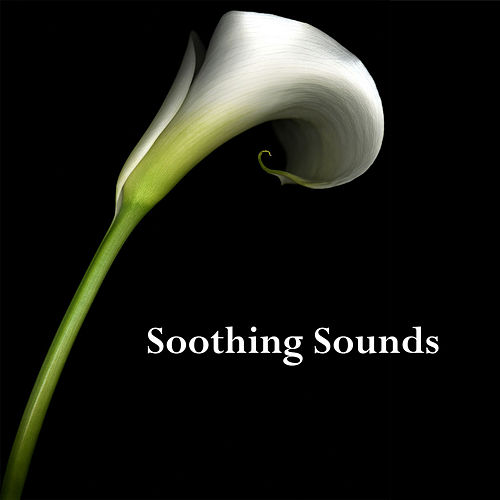 Soothing Sounds by Various Artists