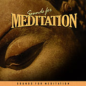 Sounds for Meditation by Various Artists