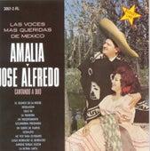 Las Voces Mas Queridas De Mexico by Amalia Mendoza