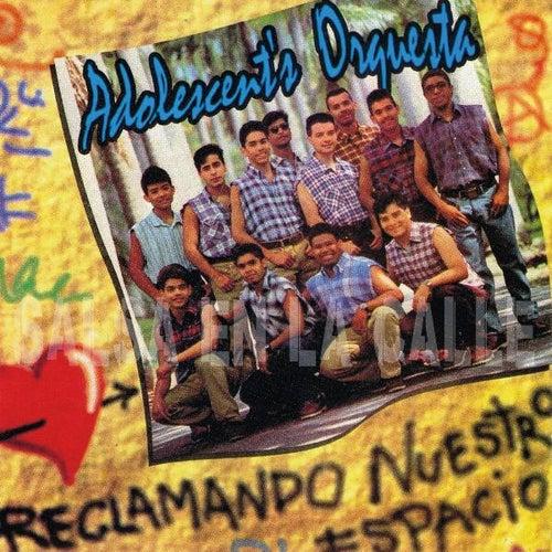 Reclamando Nuestro Espacio by Orquesta Adolescentes