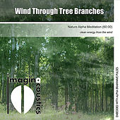 Wind Through Tree Branches (Nature Alpha Meditation) by Imaginacoustics