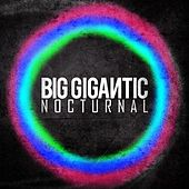 Nocturnal by Big Gigantic