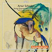 Schnabel: String Quartet No. 1 - Notturno by Various Artists