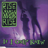 If Only I Knew by Rise Robots Rise