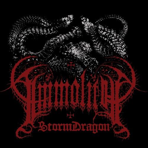 StormDragon by Immolith