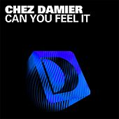 Can You Feel It by Chez Damier