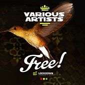 Free Riddim Selection by Various Artists