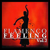 Flamenco Feeling Vol. 2 by Various Artists