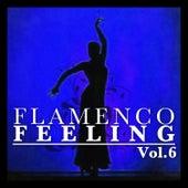Flamenco Feeling Vol. 6 by Various Artists