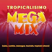 Tropicalisimo Mega Mix by Various Artists