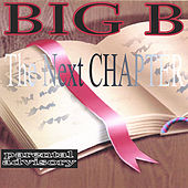 The Next Chapter by Big B