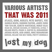 That Was 2011: Lost My Dog by Various Artists