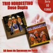 Dose Dupla (50 Anos de Sucessos No Forró) by Trio Nordestino